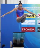 http://img235.imagevenue.com/loc449/th_44366_diving_world_champs_shanghai_2011_168_122_449lo.jpg