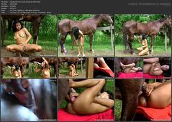 th_463912825_tduid3219_sal_zbe_034_wmv_xl_01_HorseSexMovie.mp4_123_515lo.jpg